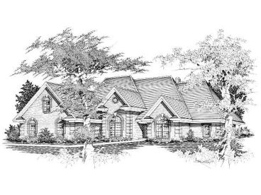 Luxury Home Design, 061H-0119